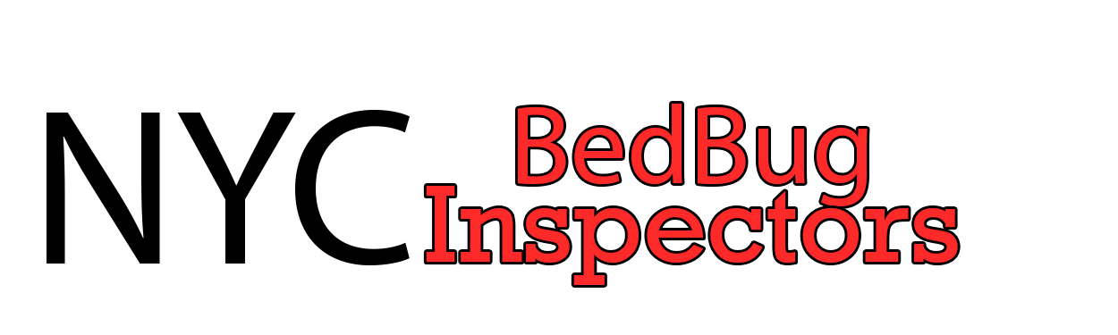Do Bed Bugs Jump Or Fly Ny Bed Bug Inspectors